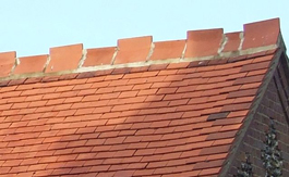 Stary dach po aplikacji AlgoClear